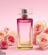 Women's Perfumes