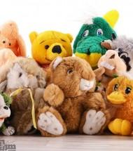 Stuffed & Plush Toys