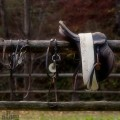 Equestrian tools
